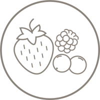 berry-flavor Icon